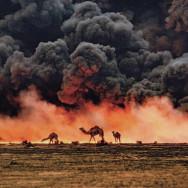 Kuwait, 1991, photo by Steve McCurry