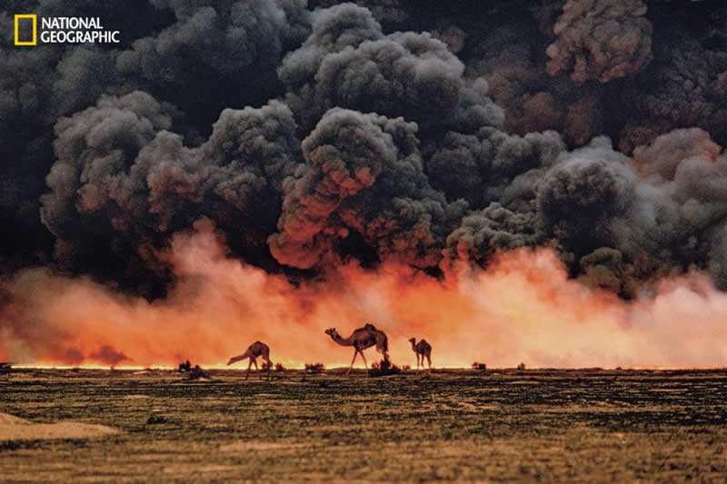 Kuwait, 1991, photo by Steve McCurry